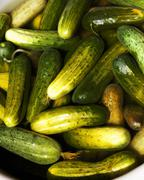Cucumbers in Pickling Marinade Stock Photos