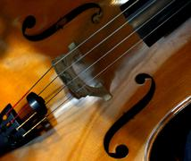 Stock Photo of Cello close-up