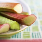 Maine Grown Rhubarb; Close Up Stock Photos