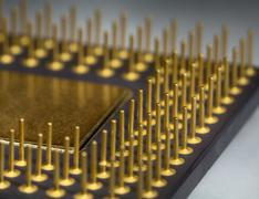 gilt legs of the processor - stock photo