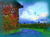 The House in Napa Valley Stock Illustration