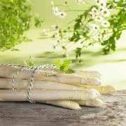 An arrangement of white asparagus, chervil and chamomile Stock Photos
