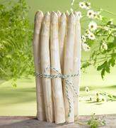 An arrangement of white asparagus, chervil and chamomile - stock photo