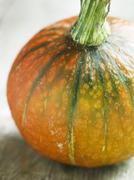 Stock Photo of A pumpkin