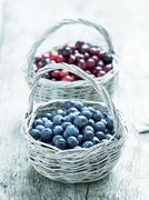 Blueberries and cranberries in baskets Stock Photos