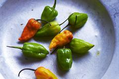 Stock Photo of Fresh green and yellow chilli peppers