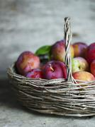 Plums in basket - stock photo