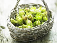 A basket of hazelnuts Stock Photos