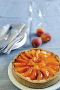 Fresh apricot cream tart Stock Photos