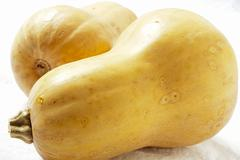 Two Butternut Squash Stock Photos