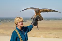 Boise, idaho - october 7 : unidentified handler at world center for the birds Kuvituskuvat