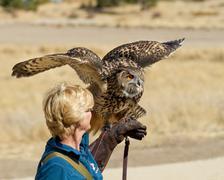 Boise, idaho - october 7 : unidentified trainer at world center for the birds Kuvituskuvat