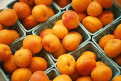 Organic Apricots at a Farmer's Market Stock Photos