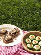 Cucumber and Hummus Appetizer and Peanut Butter and Jelly Bars; On a Blanket in - stock photo