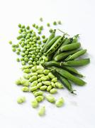 Fresh peas and fresh broad beans - stock photo