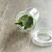 Organic Sage in a Tipped Glass Jar - stock photo