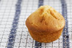 A peach muffin on a wire rack Stock Photos