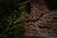 Ruins of an old building Stock Photos