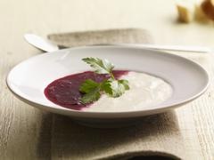 Beetroot and kohlrabi sauce - stock photo