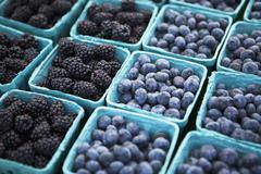 Baskets of Freshly Picked Blueberries and Blackberries at a Farmers Market - stock photo