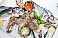 Fresh fish, octopus and giant prawns Stock Photos