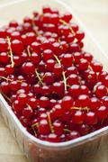 Redcurrants in plastic punnet - stock photo
