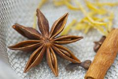 Star anise, cloves and a cinnamon stick Stock Photos