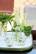 Lemonade with fresh mint - stock photo