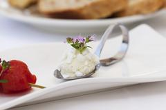 A spoonful of raw milk goat's cheese and thyme - stock photo