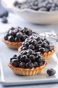 Blueberry tartlets Stock Photos