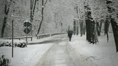 Lonely road in snowfall Stock Footage