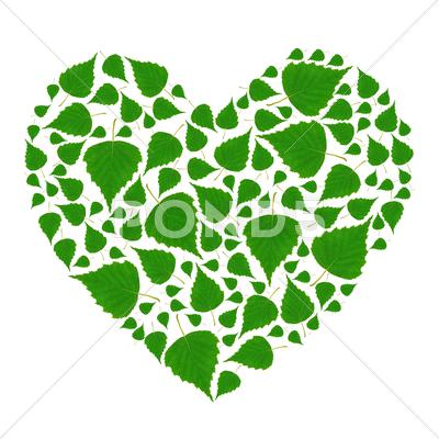 Stock photo of green heart