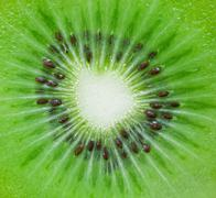 kiwi background - stock photo