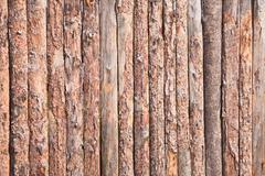 rural primitive fence from pine logs - stock photo