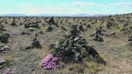 Stock Video Footage of Iceland cairns in southern Iceland
