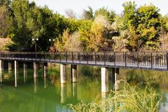 bridge over the lake in the arboretum. shymkent - stock photo