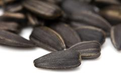 Stock Photo of black seeds on a white background. macro