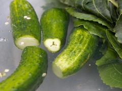 Fresh-salted cucumbers in pickle Stock Photos