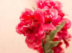 red artificial flowers - stock photo