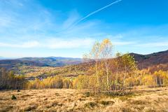 autumn country landscape (carpathian, ukraine). - stock photo