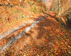 autumn mountain dirty road - stock photo