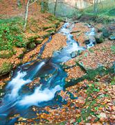 Rocky autumn stream Stock Photos