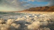 Dead Sea coastline Stock Footage