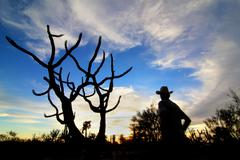 Arizona Cowboy Enjoys Sunset - stock photo