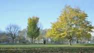 Time lapse of people in Green Park, London, on a sunny day Stock Footage