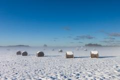 snowy hay bales with fog - stock photo