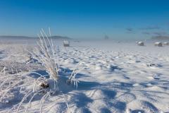 snowy hay bales near farm - stock photo