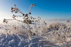snowy hay bales - stock photo