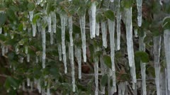 Icicles 001 Stock Footage