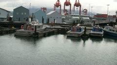 Man Power Washing Habour Patrol Boat Dock. Stock Footage